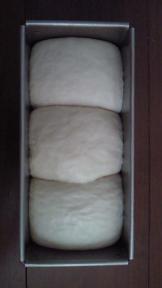 いちご酵母パン二次発酵後