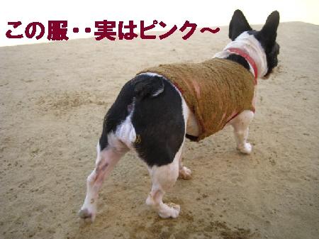 001_20090918152635.jpg