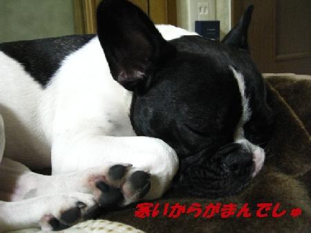 002_20091018225911.jpg