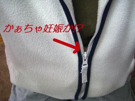 002_20091027051237.jpg