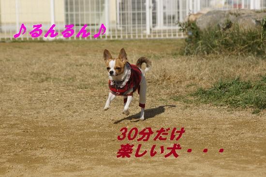075_20091221140612.jpg