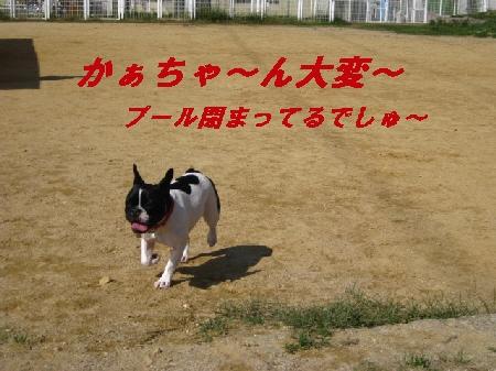 10_20091006193420.jpg