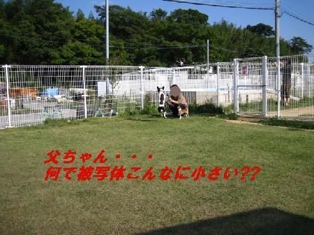 1_20091007213255.jpg