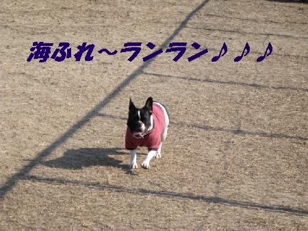 ふれ2009海 002