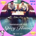 spicy flower(web用)