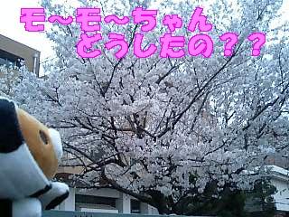モ~モ~が行く1-3