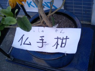 korichan-blog2623.jpg