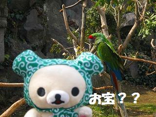 korichan-blog2745.jpg