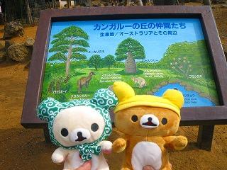 korichan-blog2746.jpg