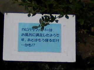 korichan-blog2757.jpg