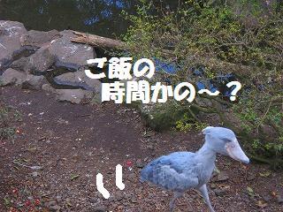 korichan-blog2769.jpg