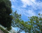 台風がくる? 晴天 空