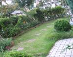 狭いぞ!我が家の庭