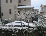 2006 12/29 雪2