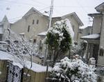2006 12/29 雪が降ります