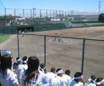 高校野球 応援
