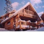 例年の別荘の雪