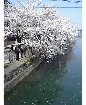 藤森琵琶湖疏水