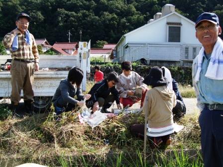 芋掘り体験-03