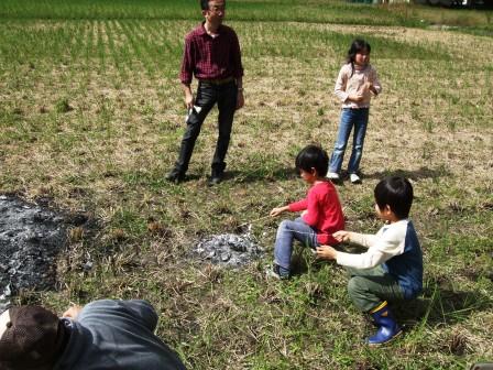 芋掘り体験-13