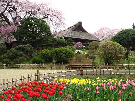 秩父宮公園