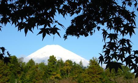 11月13日の富士山
