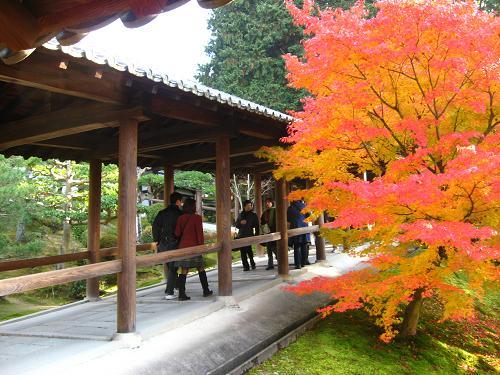 東福寺 4