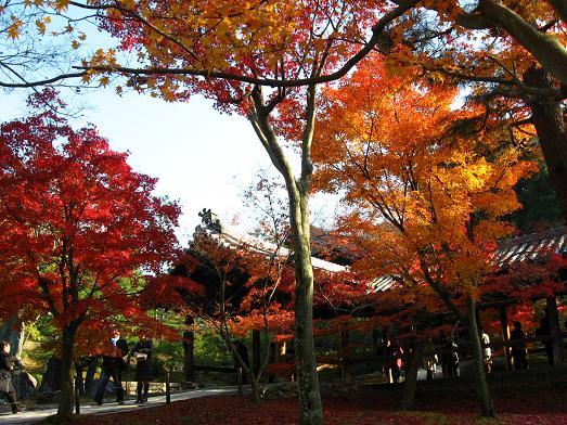 東福寺にて 2