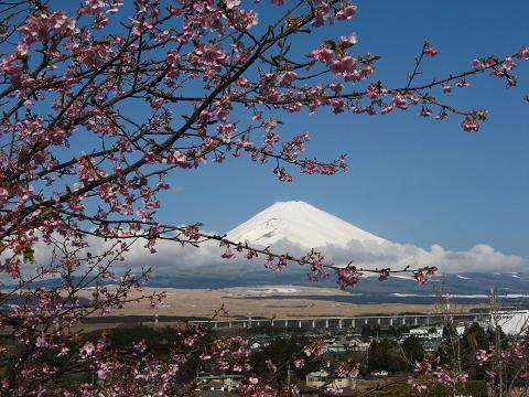 ありがた山からの富士山