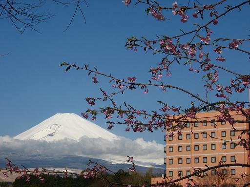 富士山の臨めるホテル
