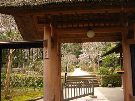 東慶寺 3