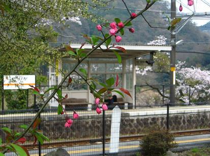 谷峨の駅にて