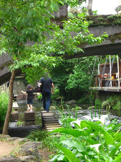 源兵衛川にて 5