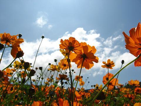 花の都公園にて