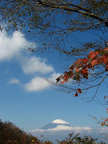 金時山にて 4