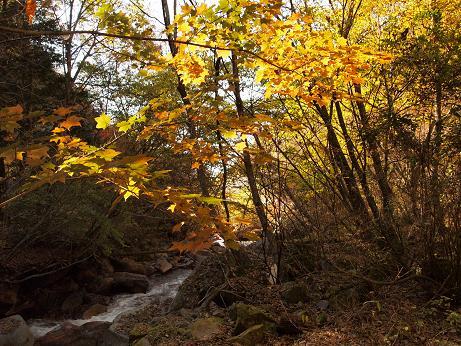 横谷峡を散策 2