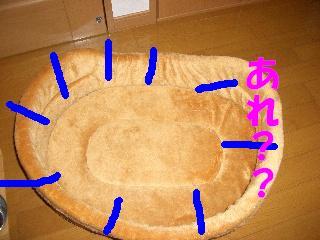 CIMG6250.jpg