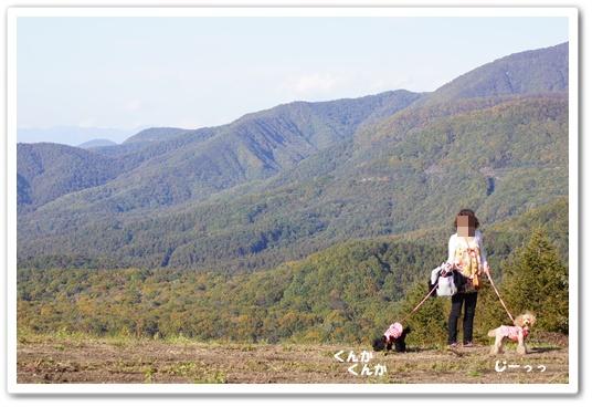 201110015yuzukosyo1.jpg