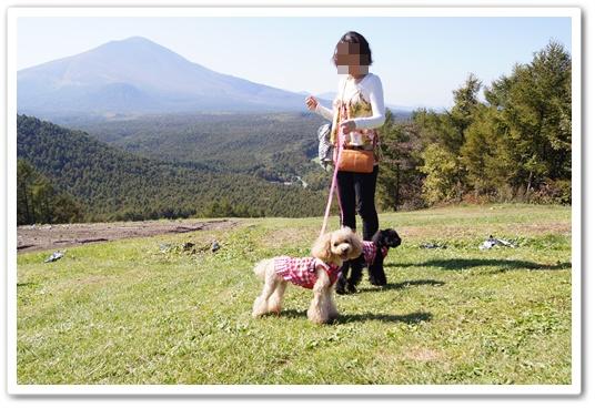 201110015yuzukosyo3.jpg
