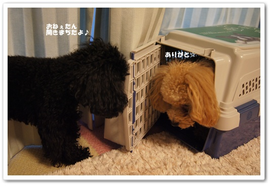20111007yuzukosyo1.jpg
