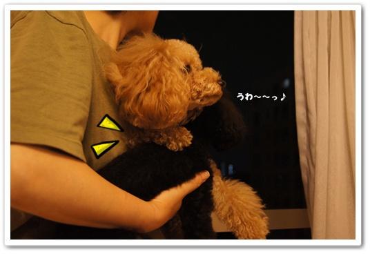 20111009yuzukosyo2.jpg