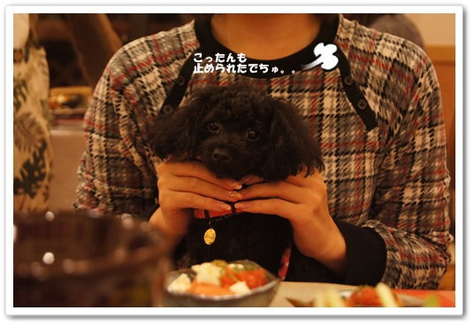 20111018kosyo2.jpg