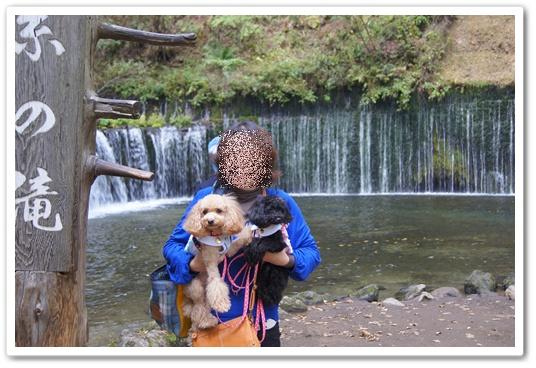20111019yuzukosyo13.jpg