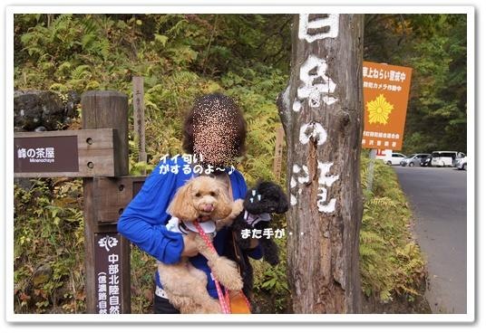 20111019yuzukosyo14.jpg