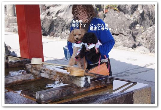 20111019yuzukosyo8.jpg