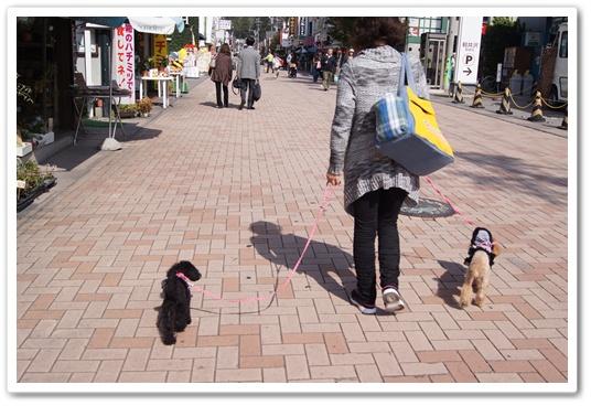 201110271画像5