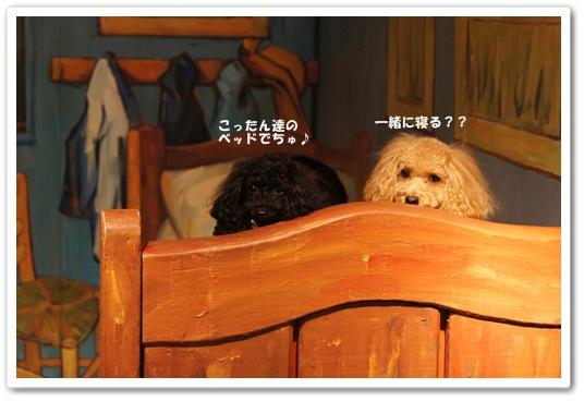 201110271yuzukosyo5.jpg