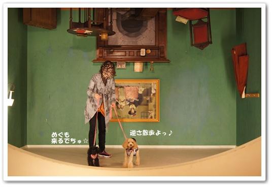 201110271yuzukosyo6.jpg
