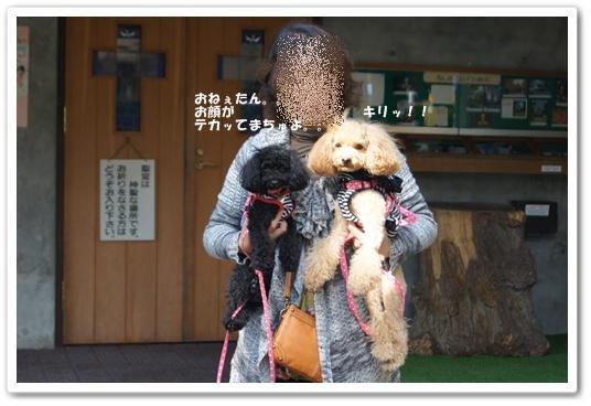 201110271yuzukosyo8.jpg