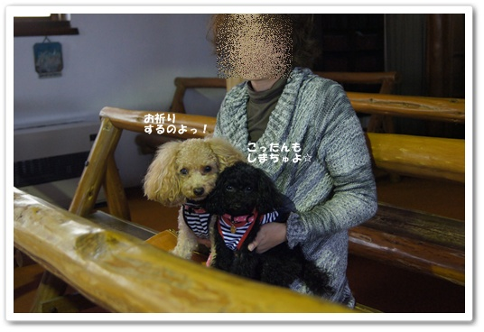 201110271yuzukosyo9.jpg